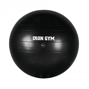 EXERCISE BALL 65cm (Burst Resistant)